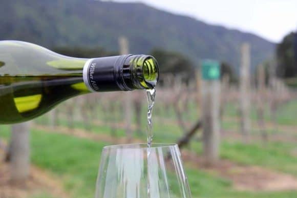 Newzealandsk vinsmagning i Holte Vinlager